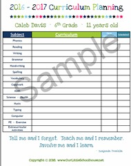 Curriculum Planing - Custom.png