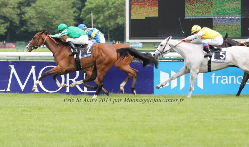 Photos Longchamp 25-05-2014 IMG_1235
