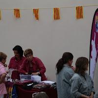 Actuació Festa Major Castellers de Lleida 13-06-15 - IMG_2262.JPG