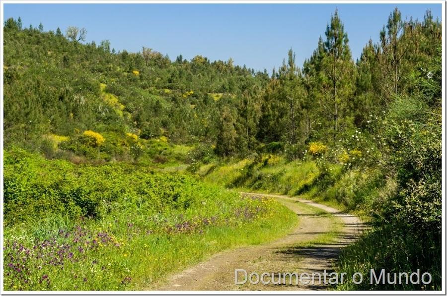 Corredor verde da Atalaia, PR2 - Corredor Ecológico das Ribeiras de Alferreireira e Barrocas