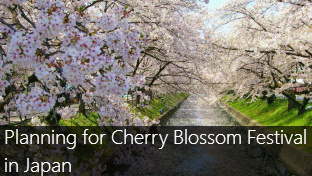 Time for a Spring Getaway? Why it is a blooming time to goto Japan?