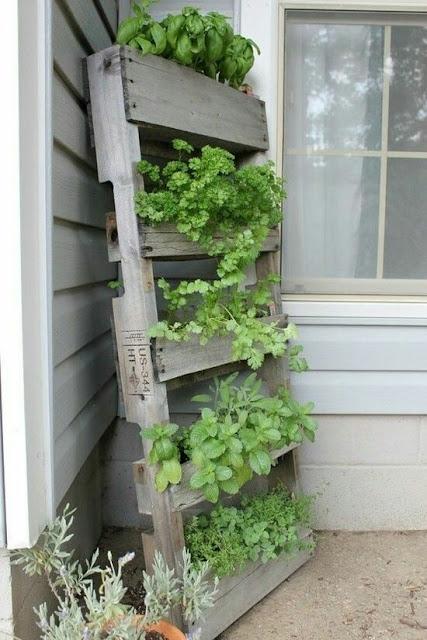 wood pallet vegetable garden