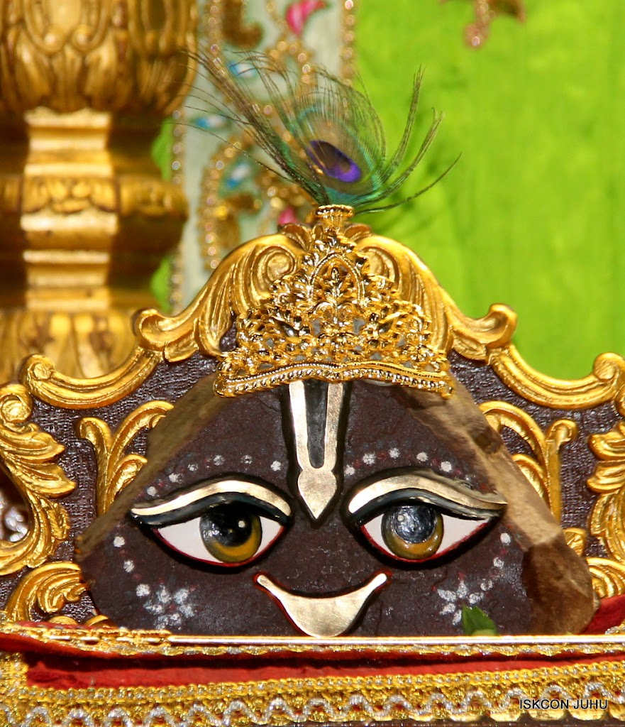 ISKCON Juhu Mangal Deity Darshan on 4th June 2016 (26)