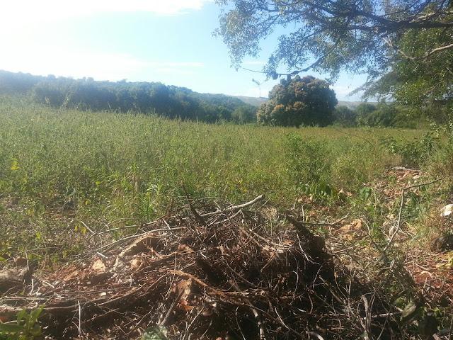 Denuncia que el CEA vendió un terreno dos veces en La Guázara
