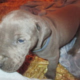 Torres boy @ 4 weeks