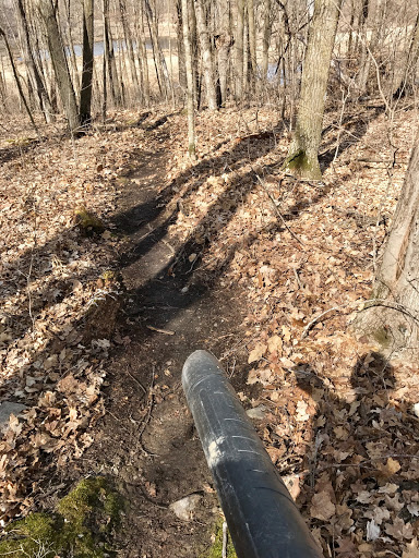 Blowing leaves and clearing twigs and sticks off the east side singletrack. April 13th, 2017.