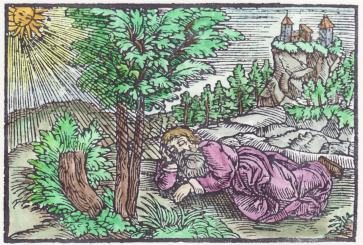 Woodcut 32 From The Prognostications Of Paracelsus, Emblems Related To Alchemy
