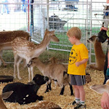 Fort Bend County Fair 2015 - 100_0162.JPG