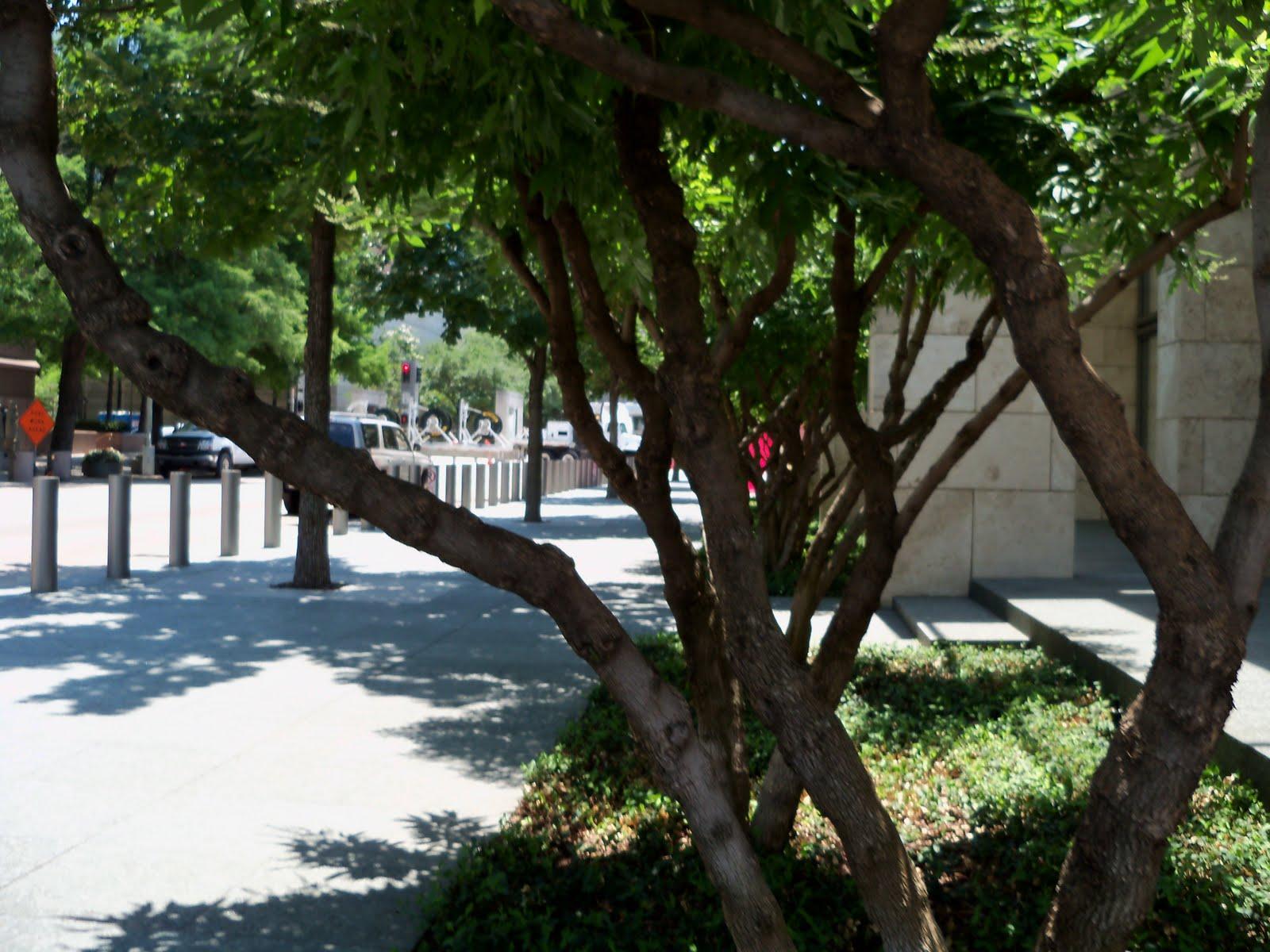 Dallas Fort Worth vacation - 100_9682.JPG