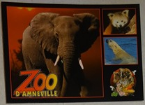 714 11-carte postale zoo d'Amnéville