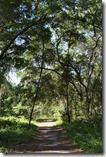 Trail view-2