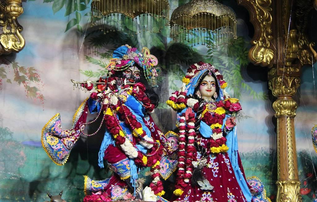 ISKCON Delhi Deity Darshan 02 Feb 2016 (8)