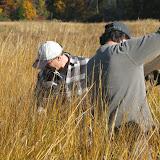 Guilford Salt Meadow Sanctuary Osprey Platform - sfs%252C10-25-09%2Bosprey%2Bplatform%2Binstall%252C010.JPG