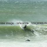 _DSC8066.thumb.jpg