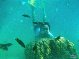 pulau harapan, 23-24 mei 2015 panasonic 25