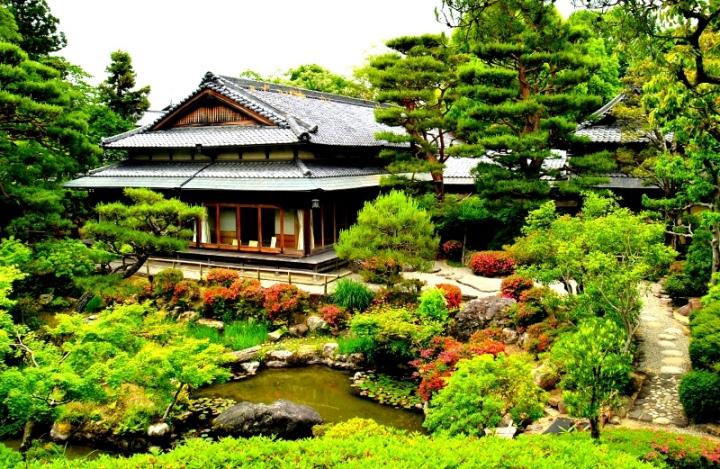 Beautiful Nara