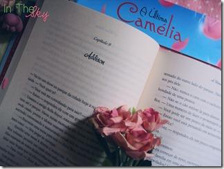 a última camélia04