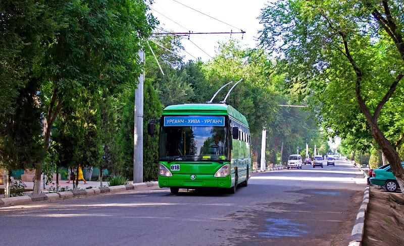 Троллейбус в Хиве