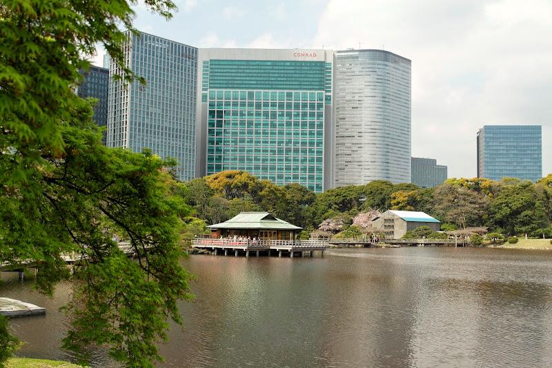 2014 Japan - Dag 11 - janita-SAM_6671.JPG