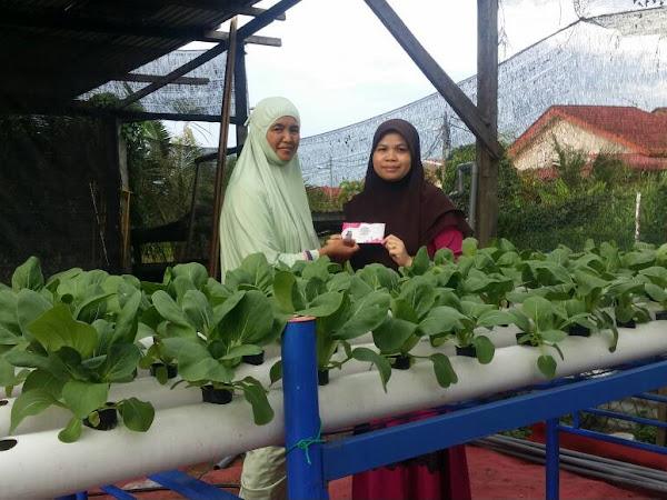 Infak Al Quran dan Anak Pokok Cili di Tahfiz Nur Kasih, Klang Selangor