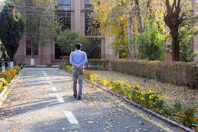 I walked around the university to meet&greet trees that I had been waiting for, Comsats University
