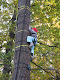 Obrázek: Den stromů 2012 004.jpg