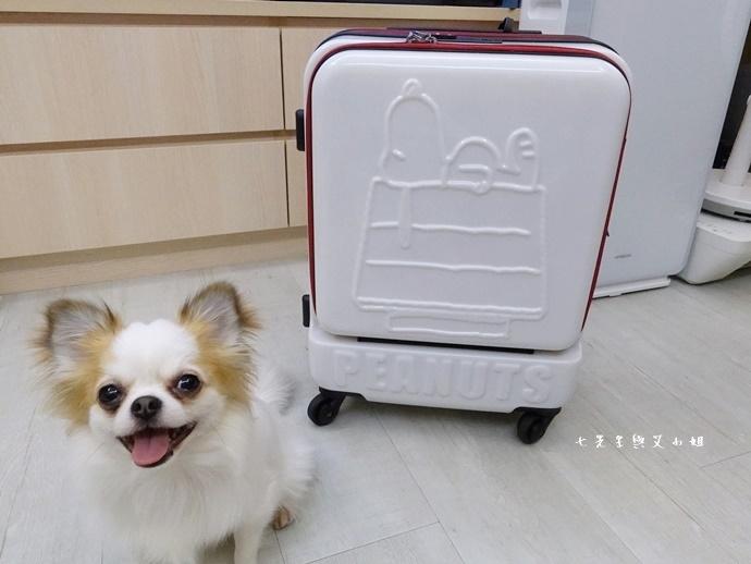 4 史努比登機箱 關西空港 關西旅遊 大阪旅遊 必買 戰利品