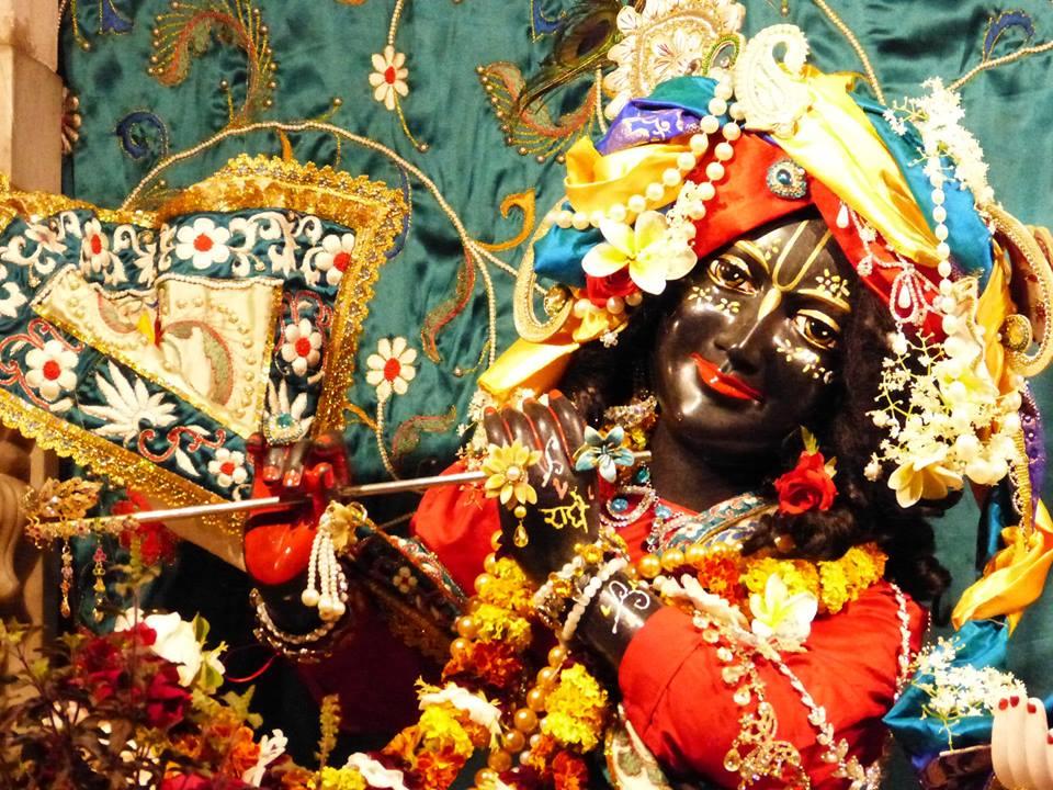 ISKCON New Govardhan Deity Darshan 12 Mar 2016 (26)