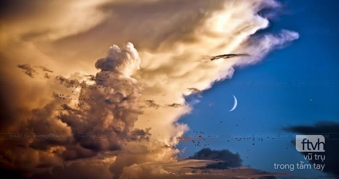 Những đám mây, đàn chim, Hằng Nga và Thần Vệ Nữ