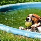 w basenie (3).jpg