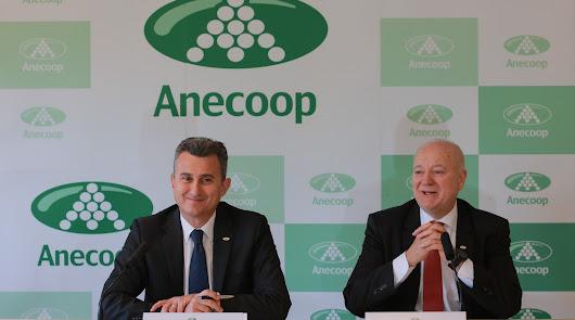 Anecoop presenta cifras de crecimiento en el marco de un ejercicio completo