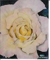 'Rose weiß-rosa', Öl auf Leinwand, 71x85, 2002, verkauft