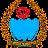 Tariq Raja avatar image