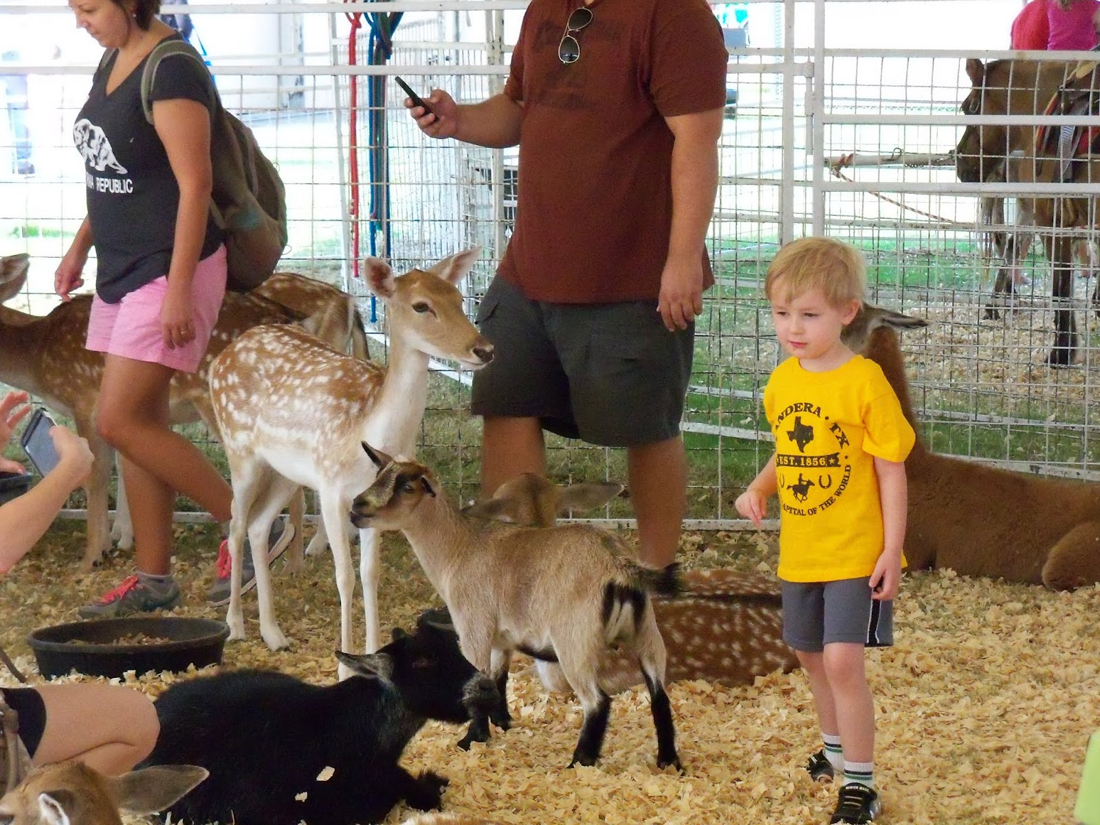 Fort Bend County Fair 2015 - 100_0161.JPG