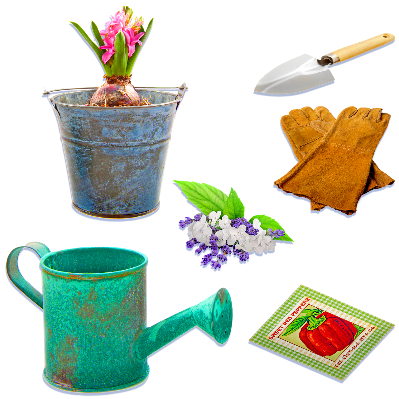 6 Gardening Supplies That You Must Provide At Home
