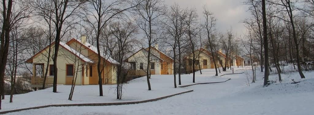 winter 000