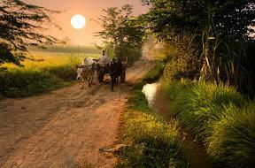 Rise of Punjab