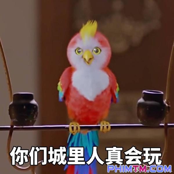 """""""Sở Kiều Truyện"""": Vừa sáng dậy, Triệu Lệ Dĩnh đã thân mật với trai đẹp thế này đây! - Ảnh 21."""