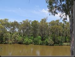 171105 029 Goondiwindi Macintyre River Walk