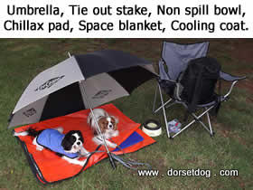 Consider taking an umbrella, space blanket, non spill bowl, cooling coats and cooling pad