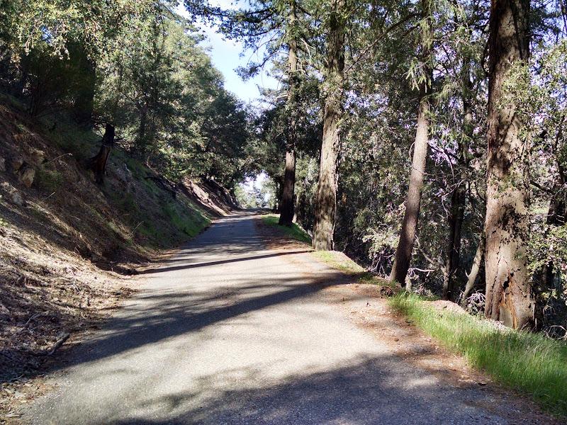 Life Ride • Figueroa Mountain Road