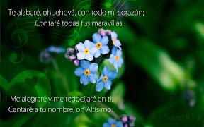 Salmo 9.1-2