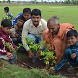 Gurukul Green Revolution (49).jpg
