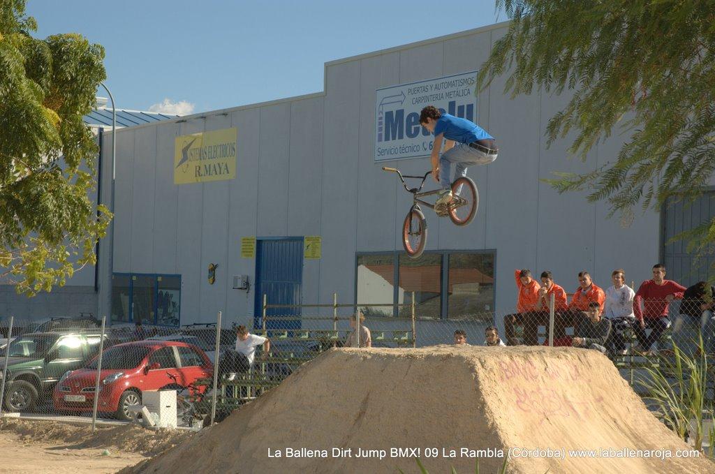 Ballena Dirt Jump BMX 2009 - BMX_09_0032.jpg