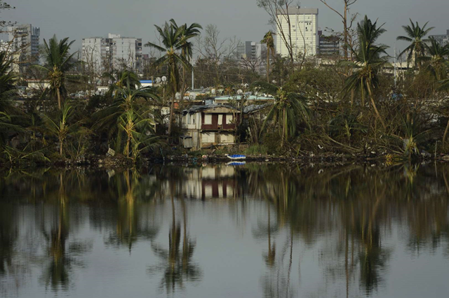 Trees are reflected in the water in the Buena Vista community in the aftermath of Hurricane Maria in San Juan, Puerto Rico, Sunday, 24 September 2017. Photo: Carlos Giusti / AP Photo