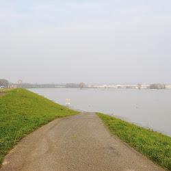 Hoogwater januari 2018