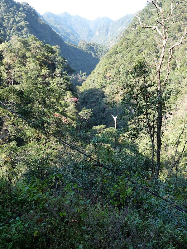 Chine .Fujian.Wuhi shan B - P1030224.JPG