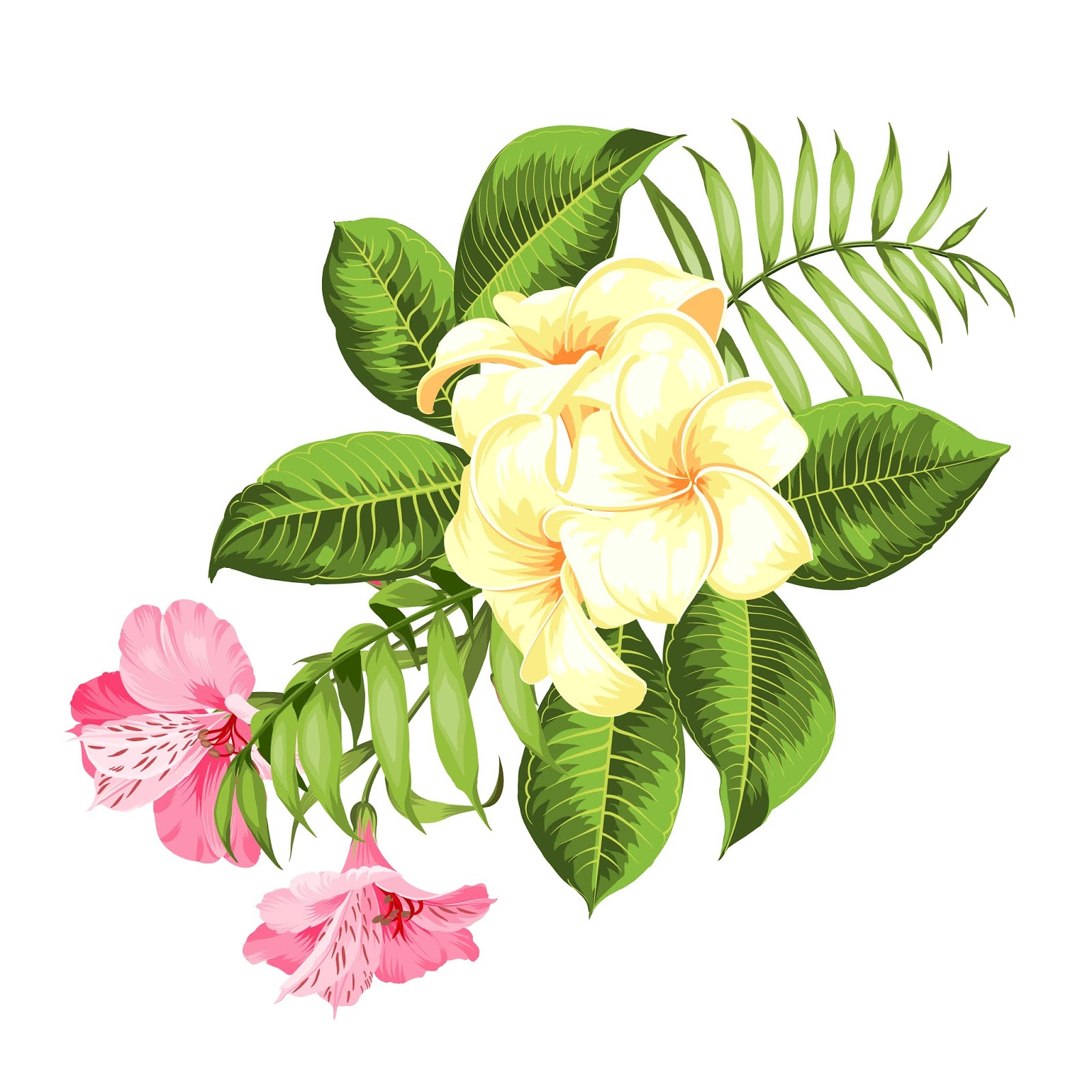 Tropical Flower White Background Vector Illustration Free Download Vector CDR, AI, EPS and PNG Formats