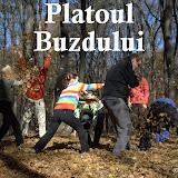 2010-10-31 Platoul Buzdului