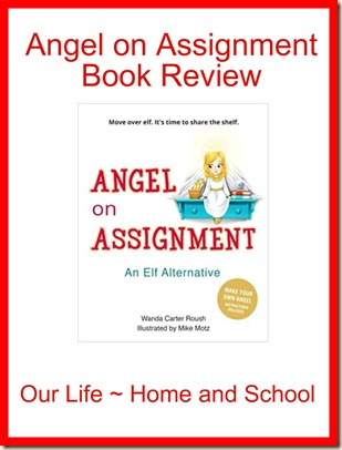 Angel on Assignment Book Review